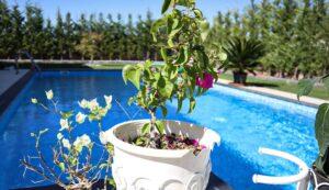Uygun Fiyatlı ve Çevreyle Uyumlu Havuz Modelleri